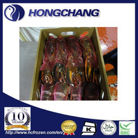 Presell Canadian Frozen Whole Spring Raw Lobster