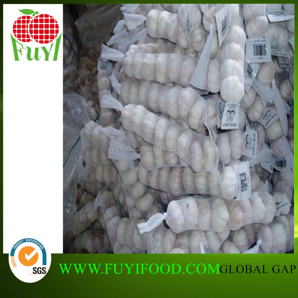 China Garlic Price 2016/Normal garlic/with mesh bag
