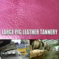 unique and fashion metallic pork lining salted pork leather for bag upper for lamb goat skin for pilot jacket