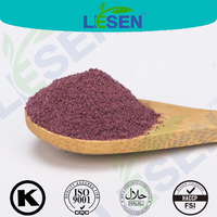 100% Natural Good Flavor Freeze Dried Blueberry Powder