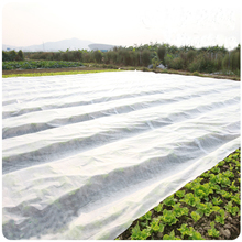 3% UV resistant agriculture nonwoven fabric