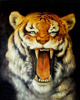 /product-detail/gz559-40-50-the-king-of-forest-tiger-realistical-art-painting-home-decor-diy-dimond-painting-60611820767.html
