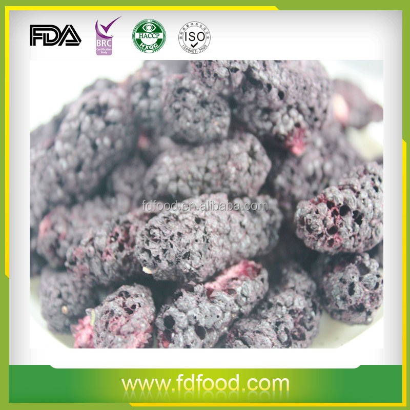 freeze dried food dry fruit dried Freeze dried Mulberry
