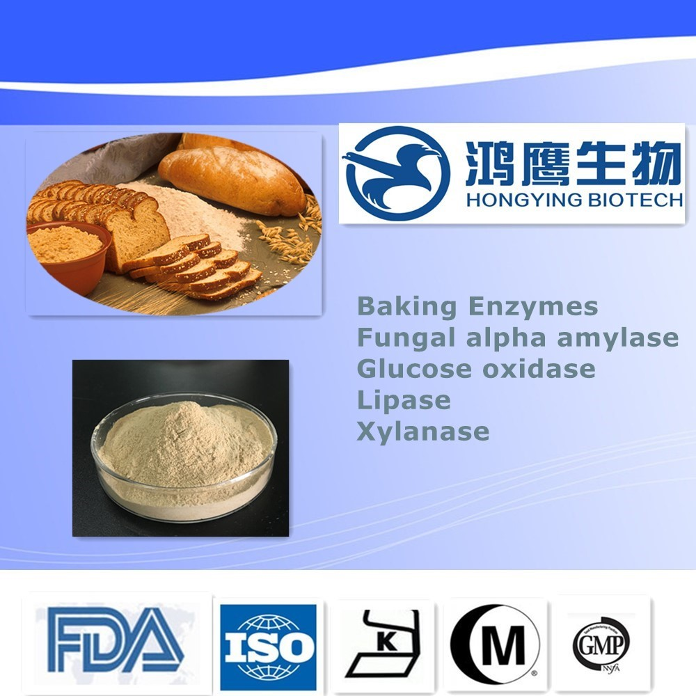Food Grade Glucose Oxidase Baking Powder