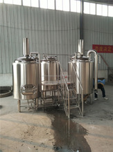 small model 500l brewery equipment,beer fermenting turnkey plant for bar/pubs