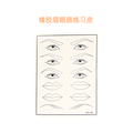 In stock Newest eye eyebrow lip practice skin for sale