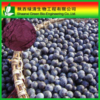 Free Sample Supply Organic Acai Berry Extract/Weight Loss Function Acai Berry Powder