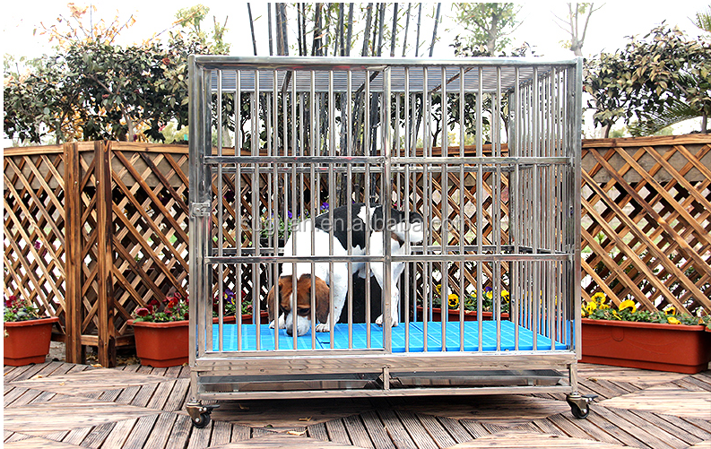 Chinese supplier large outdoor stainless steel dog cages / welded wire dog kennel / pet house