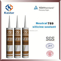 Neutral Silicone Sealant for Automotive Glass
