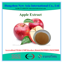 Polyphenols 20%-80% UV Apple Extract Powder With Kosher Halal ISO22000 Certificate