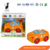 New Style Wholesale Funny Touch Electric Plastic B/O Car Toys Small For Kids
