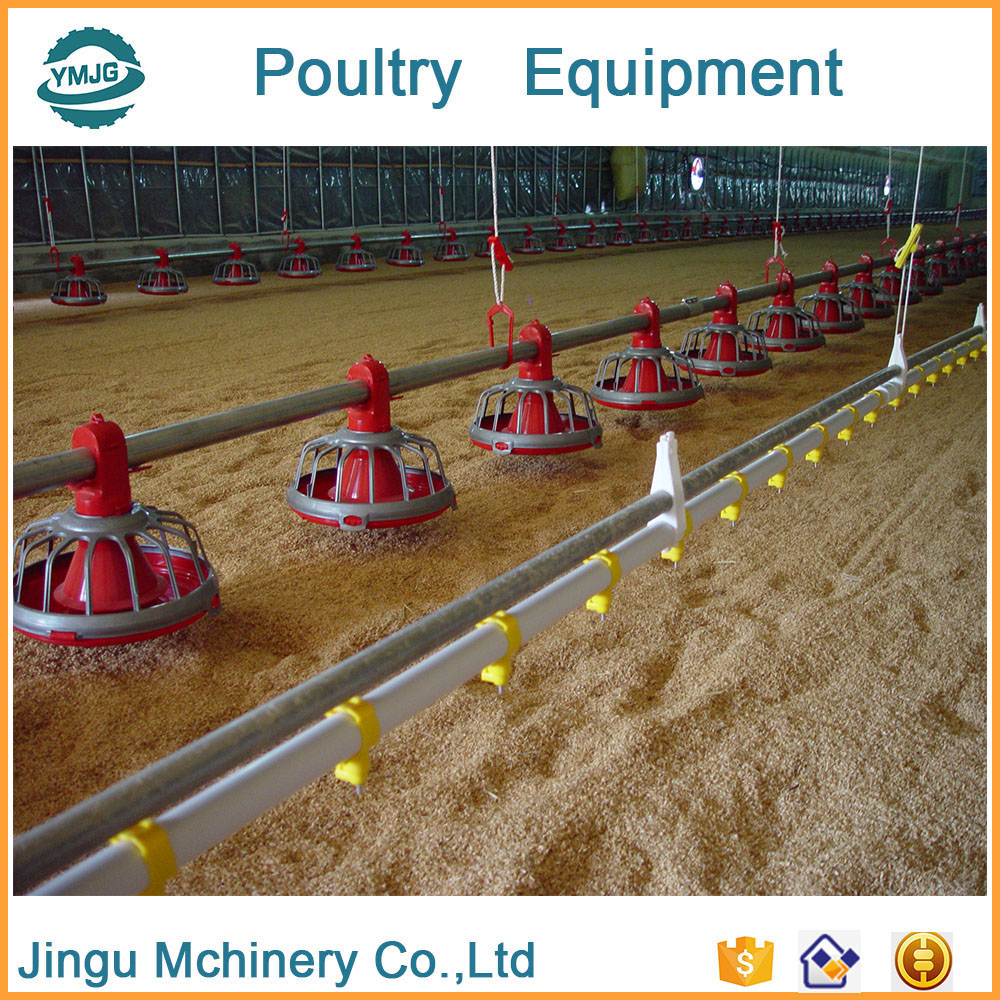Manufacturer Supplier poultry feeding system for chicken house With Promotional Price