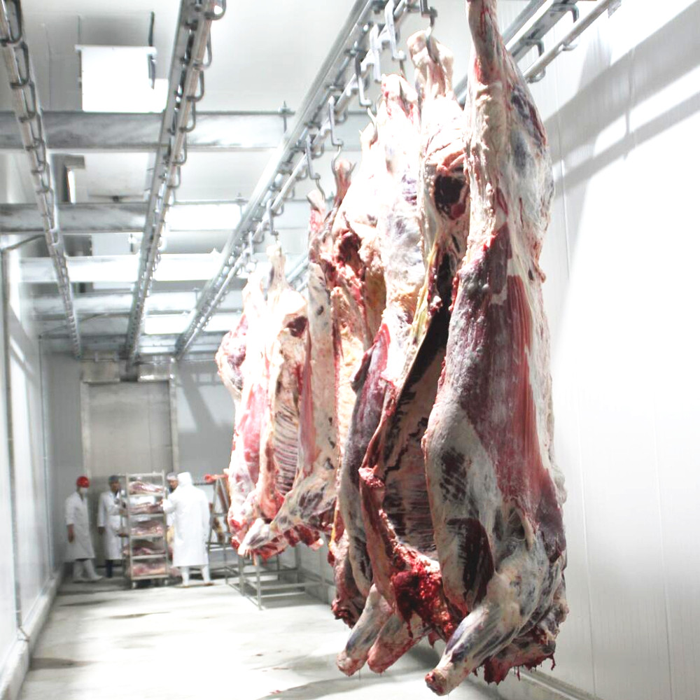 Abattoir Complete OX and Goat Slaughter Line for Meat Processing/Slaughter House Equipment