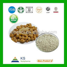 100% Pure Natural high quality Freeze-dried natto powder