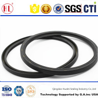 TC184*208*12 metric size completely nbr rubber covered spring loaded rear wheel oil seal with auxiliary lip