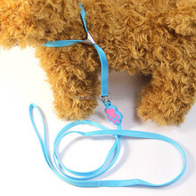 colorful fluorescent pet beam neck leashes/pet leashes/dog leashes