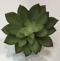 Artificial Green Small Succulent Plants