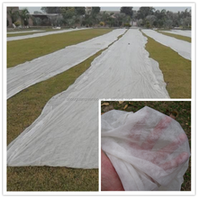 PP/Polypropylene spunbond agriculture nonwoven/1.5m black non woven fabric for plant protect,weed control