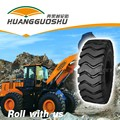 wheel loader tyre hot sale in apollo