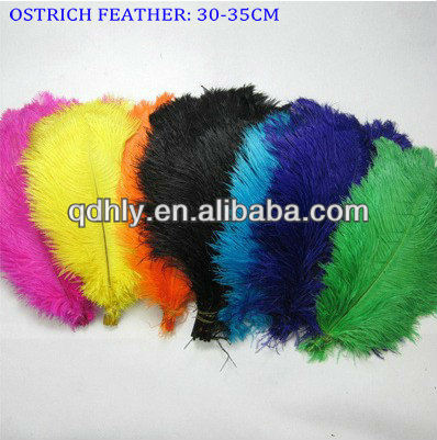 Decorative Colorful Ostrich Feather for Sale Cheap