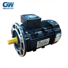 High Quality GW 740rpm/3420rpm 230v 2.2 kw ac three phase induction electric motor