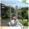 75W 12V Mini VAWT Low RPM Wind Turbine Generator
