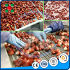 Strawberry Fruit Frozen Produciton Line/fruit Freezing Processing/Quick Freezing Strawberry Plant