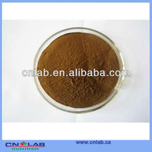 UHT Steam Treated Angelica (Dong Quai) Extract