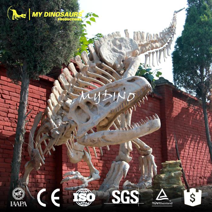 skeleton replica.jpg