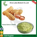 Hot sale Peanut Shell Extract Luteolin 98% in Bulk
