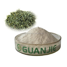 Organic Green Tea Extract,High Quality l theanine Powder,l-theanine 98%