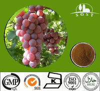 Natural anthocyanin95% from grape seed