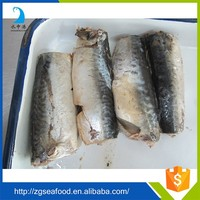 Supply Canned fish manufacture canned mackerel nutrition