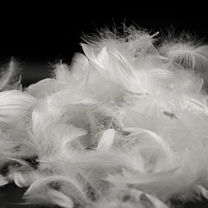 Fashion design cheap price white washed feather