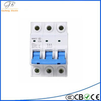 Electric Shock Protection Switch NBE7LE 2P 63A earth leakage circuit breaker