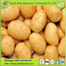 2017 Farm price sweet potato