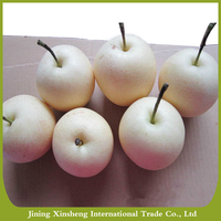 China organic fresh crown pear