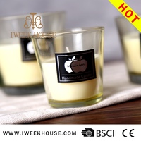 Hot sale globe medical candle holders wedding favors