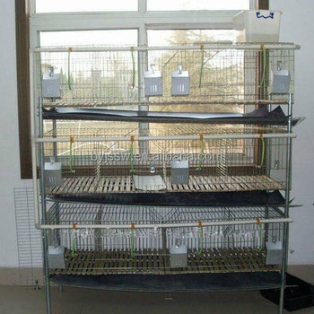 Commercial Rabbit Farm Cage With Stands