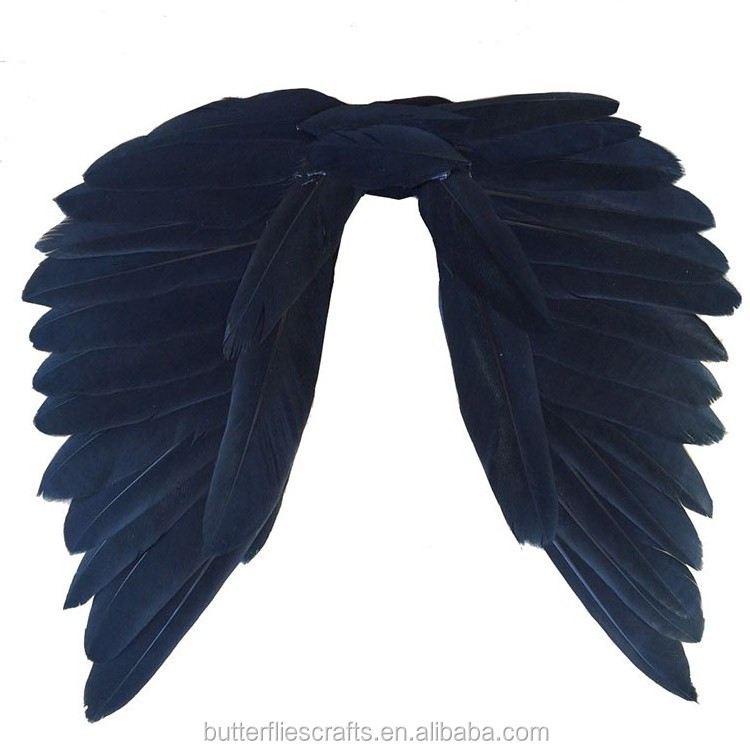 Feather fairy wing for Party Costumes and birthday party