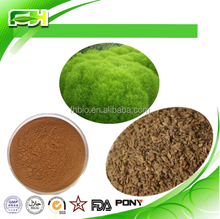 High quality 100% Natural Broom cypress extract/ Belvedere Fruit Extract