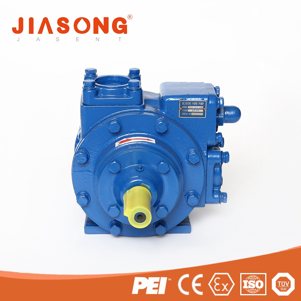 High quality cast iron lube oil vane pump