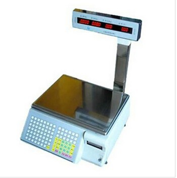 Electronic Weighing top waterproof type stainless steel table price computing scale