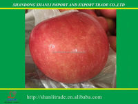 Chinese fresh fuji apple,red apple with carton packing or as per requirement