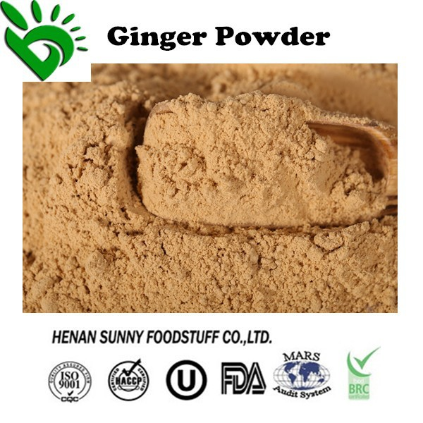 100% Pure Ginger Extract Powder for Sale