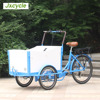 250w electric family tricycle cargo for sales