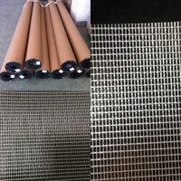 Transparent Fabric For Zipper Bag/PVC Mesh Clear Tarpaulin for stationery bags