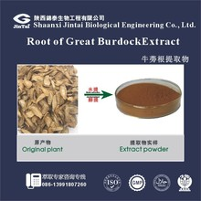factory supply burdock root extract arctiin powder