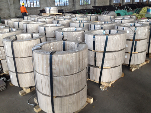 Cold rolled strips of high carbon martensitic stainless alloy DIN 1.4037 ( X65Cr13 )