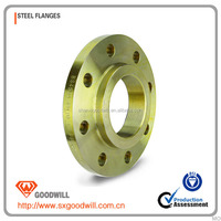 supply forged DIN bl pipe flange